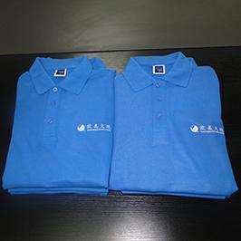 ए 3 टी-शर्ट प्रिंटर WER-E2000T द्वारे पोलो शर्ट सानुकूलित मुद्रण नमुना